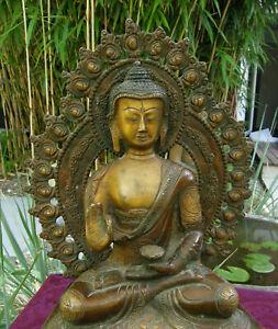 Sehr-feine-alte-Buddha-Statue-aus-Bronze-aus-NEPAL-29cm-5-Kg