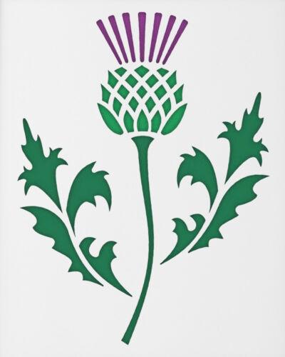 15 x 25 cm-Scottish Thistle modèle par craftstar Chardon Stencil