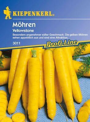 Yellowstone F1 Kiepenkerl Möhren gelb 3011 gelbe Karotten Attraktion