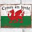thumbnail 1 - Cymru am byth! Metal Signs Welsh Dragon Flag Wall Plaque Rustic Tin Sign Wales