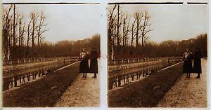 Due Donne All'Interno Di Un Jardin Stereo Amateur Targa Di Vetro Pos. Vintage