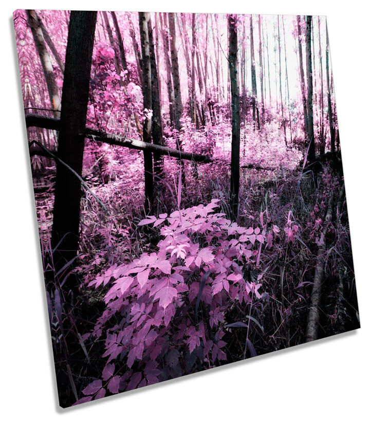 Landscape Floral Blossom Scene SQUARE BOX FRAMED CANVAS ART Picture