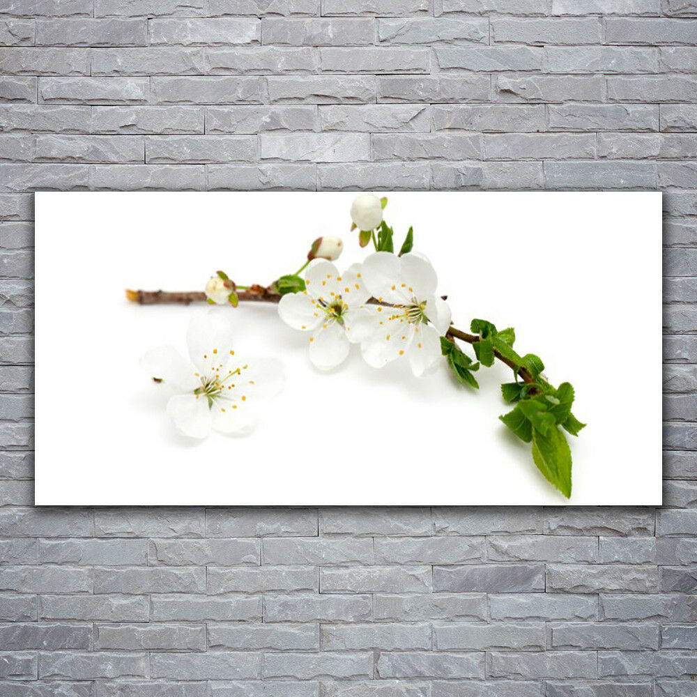 Impression sur verre Wall Art 120x60 Photo Image Fleur Branche Nature