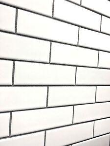 white 2x6 brick matte ceramic mosaic tile floor and wall