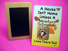 """Miniature Schnauzer"" A House Isn't Home - Dog Fridge Magnet - Sku# 16"