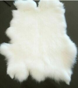 1PCS-WHITE-Rabbit-Skin-Real-Fur-Pelt-for-Animal-Training-Crafts-Fly-Tying-LARP