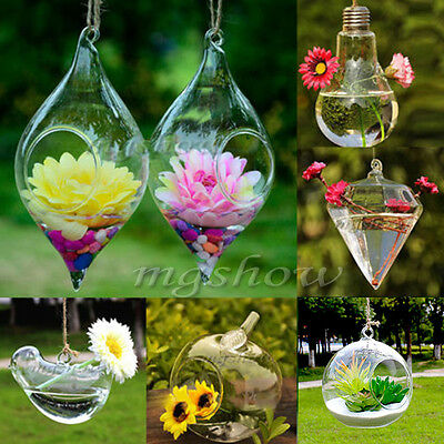 Hanging Glass Plants Flowers Vase Terrarium Container Home Party Wedding Decors