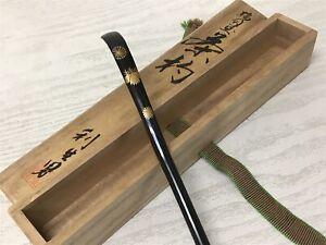 Y1487 Chashaku Tè Cucchiaio Wajima Lacca Firmato Scatola Giapponese Tè Cerimonia