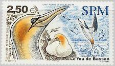 ST. PIERRE MIQUELON SPM 2003 885 C75 Solan Goose Baßtölpel Birds Vögel Fauna MNH