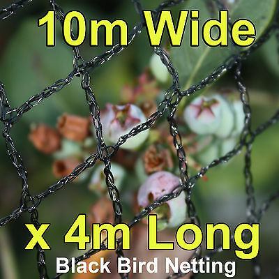 Commercial Knitted Anti Bird Netting 10 Metres Wide x  4 Metres Long Black
