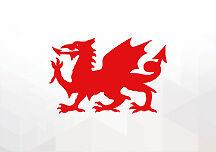 2 x Welsh Red Dragon Vinyl Stickers Window Decorative Decals Cars Van Flag