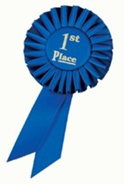 1st Place Rosette Award Ribbon 3x6   First Place Rosette Ribbon
