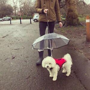 Pet-Dog-Easy-Handling-Umbrella-Leash-Transparent-Waterproof-Walking-Outdoor