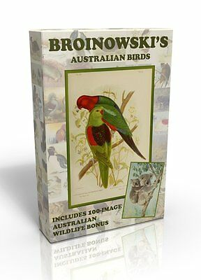 Gracius Broinowski Birds plus Australian Wildlife - Public domain images on DVD.