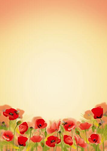 10 Kuverts Blüten rot Mohnblumen Set Motivpapier Briefpapier Mappe 20 Blatt A4
