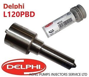 new genuine delphi injector nozzle l120pbd renault megane scenic 1 5dci ebay. Black Bedroom Furniture Sets. Home Design Ideas