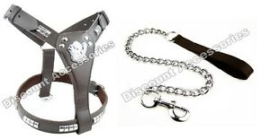 STAFF-STAFFORDSHIRE-BULL-TERRIER-STAFFY-LEATHER-DOG-HARNESS-AND-CHAIN-LEAD-BROWN