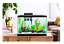 29-Gallon-Fish-Aquarium-Starter-Pack-with-LED-Tank-Fish-Complete-Aqua-Kit-Filter thumbnail 1