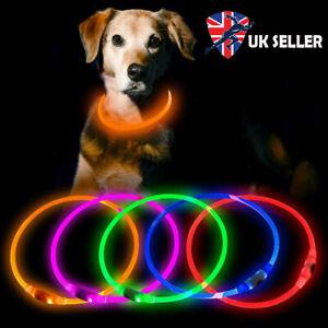 UK USB Rechargable Dog Collar LED Flashing Light Up Safety Pet Belt Waterproof