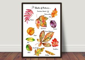 Tonalità Di Autumn tabelloni Set di tre stampe