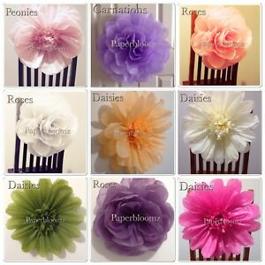 Details About Paperbloomz Large Tissue Paper Flowers X 5 Wedding Events Back Drops Wall Decor