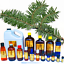 3ml-Essential-Oils-Many-Different-Oils-To-Choose-From-Buy-3-Get-1-Free thumbnail 39