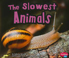 The Slowest Animals by Catherine Ipcizade (Paperback, 2011)