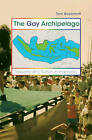 The Gay Archipelago: Sexuality and Nation in Indonesia by Tom Boellstorff (Paperback, 2005)