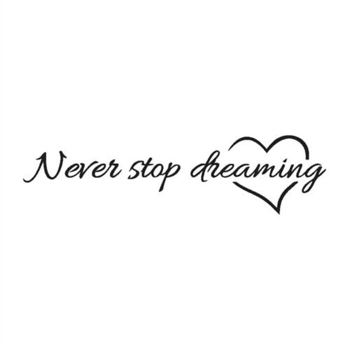 Never Stop Dreaming Wall Stickers Room Quotes Home Decor Diy Art Wall Decal JD