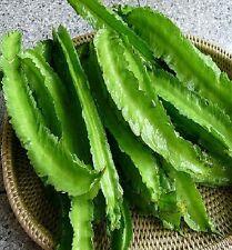 Winged bean (Psophocarpus tetragonolobus) Asparagus pea,10 +seeds (very rare)