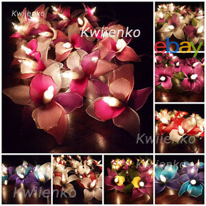 Image Is Loading 20 Led Battery Or Plug Orchid Flower String
