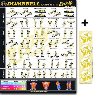 original dumbbell set exercise workout banner poster big