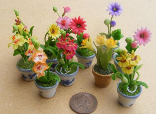 Escala 1:12 mezclado flores en un pote de cerámica o Florero tumdee Casa De Muñecas Jardín ML10