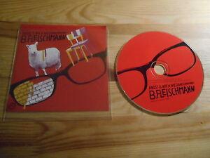 CD-Pop-B-Fleischmann-Angst-is-no-Weltanschauung-9-Song-Promo-MORR-MUSIC