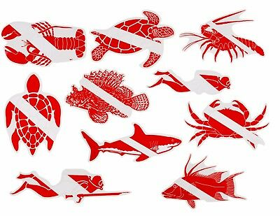 Graphic Scuba Diving Water Proof Sticker Turtle Lion Fish Lobster Shark Crab