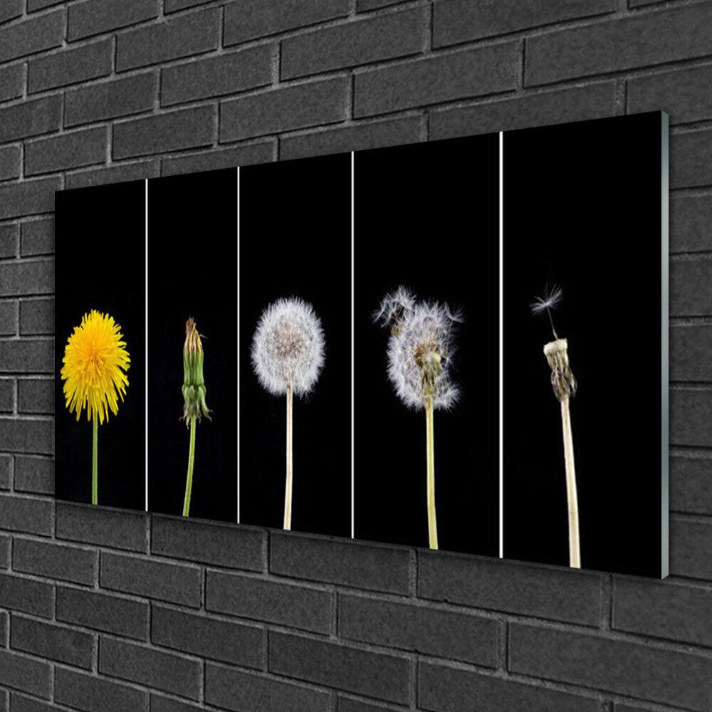 Image sur verre acrylique Tableau Impression 100x50 Floral Pissenlit