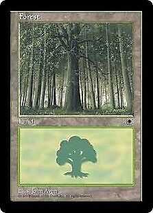 MTG 4x FOREST Portal 1 *Version 1*