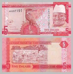 Audacious Gambia 5 Dalasi 2015 P31 Unz. Paper Money: World Coins & Paper Money