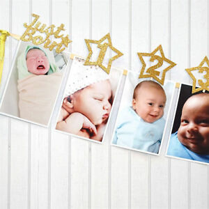 baby-growth-record-1-12-mouth-photo-ribbon-banner-for-1st-birthday-party-S-FBDU