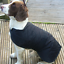 Rosewood-UK-Warm-Winter-All-Weather-Fleece-lined-Waterproof-Dog-Coat-Jacket
