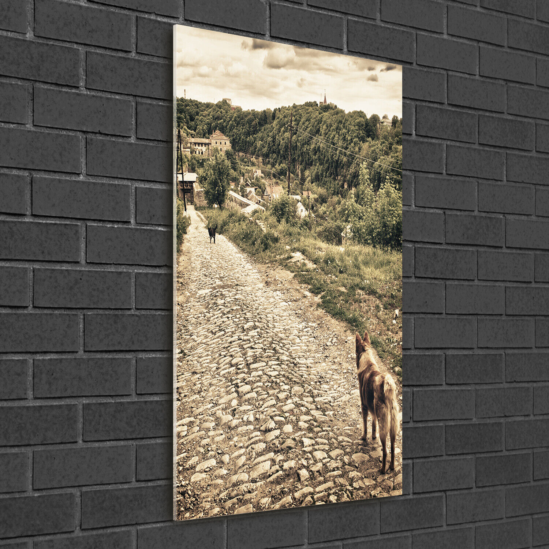 Immagine muro ARTE-STAMPA su duro-vetro ad alta Kant 50x100 cani collina