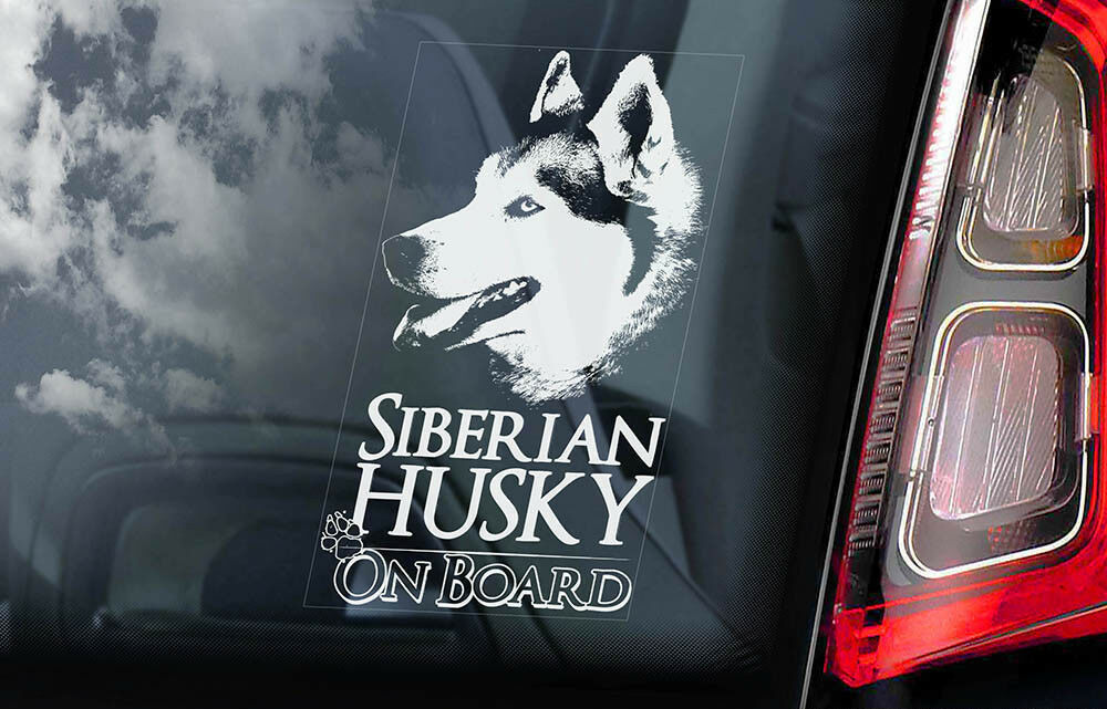 Details About Siberian Husky On Board Car Window Sticker Huskie Sled Dog Sign Decal V01
