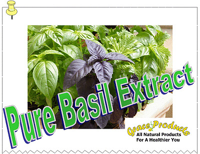 Natural Grace Products Extra Strength Pure Basil Extract  Natural & Organic