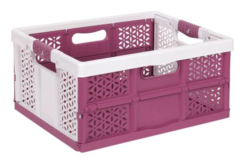 2 x Profi Klappbox mit softgriffen white berry 32L Faltbox Transportkiste
