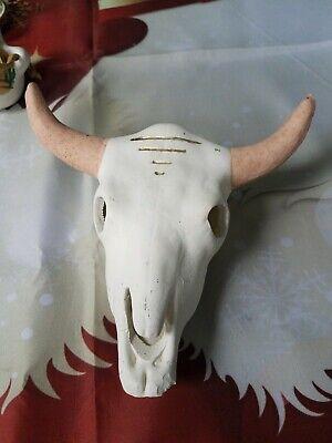 Download Ceramic Cow Longhorn Cattle Skull White | eBay