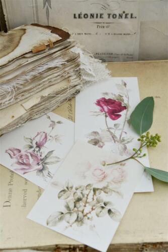 Jeanne d/'Arc Living bastelbogen 12 cartes 3 roses motifs supplantent meubles Tatouage Shabby