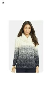 NWT-150-00-RALPH-LAUREN-Cream-Navy-Ombre-Mohair-Blend-Turtleneck-Sweater-XL