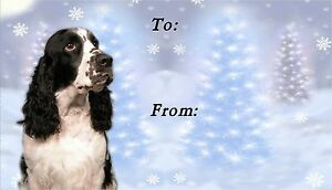English-Springer-Spaniel-Dog-Christmas-Labels-by-Starprint-Design-No4