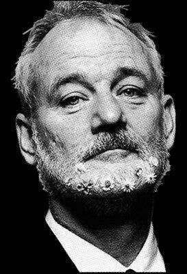 8.5X11 Bill Murray Funny Artwork Photo Print Picture