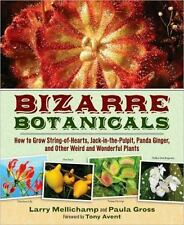 Bizarre Botanicals: How to Grow String-of-Hearts, Jack-in-the-Pulpit, Panda